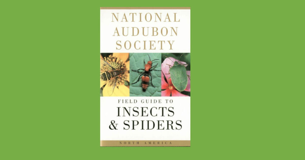 Book cover for Field Guide to Insects and Spiders