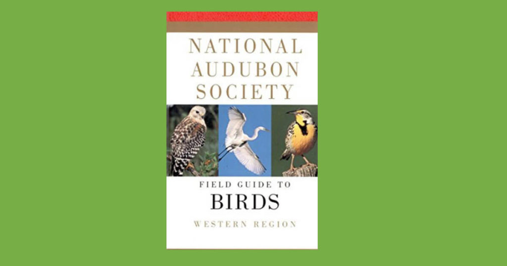 Book cover for Field Guide to Birds